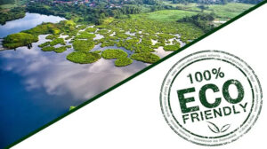 """Você sabe o que é e como ser """"Eco-friendly""""?"""